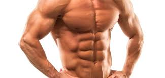 8-steps-to-build-muscle-fast-4-bulksupplementsdirect