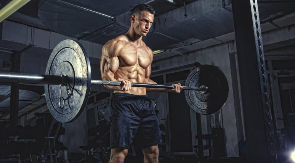 Barbell-Biceps-Curl-bulksupplementsdirect