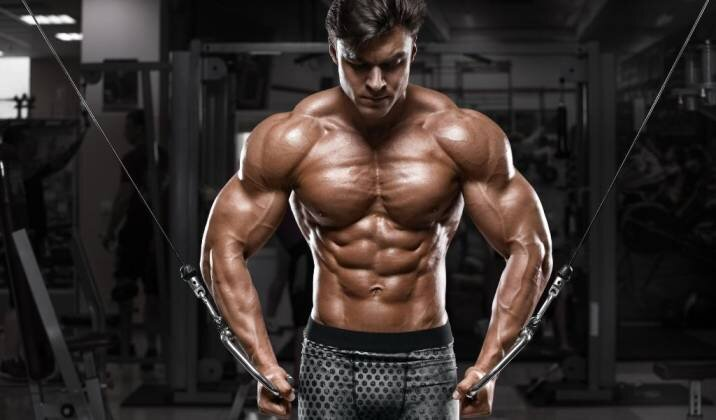 ultimate-muscle-building-guide-bulksupplementsdirect-01