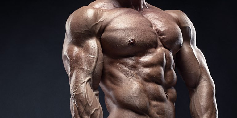 ultimate-muscle-building-guide-bulksupplementsdirect-02