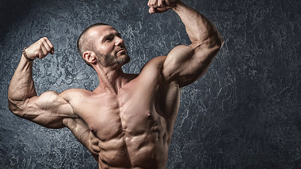 ultimate-muscle-building-guide-bulksupplementsdirect-03