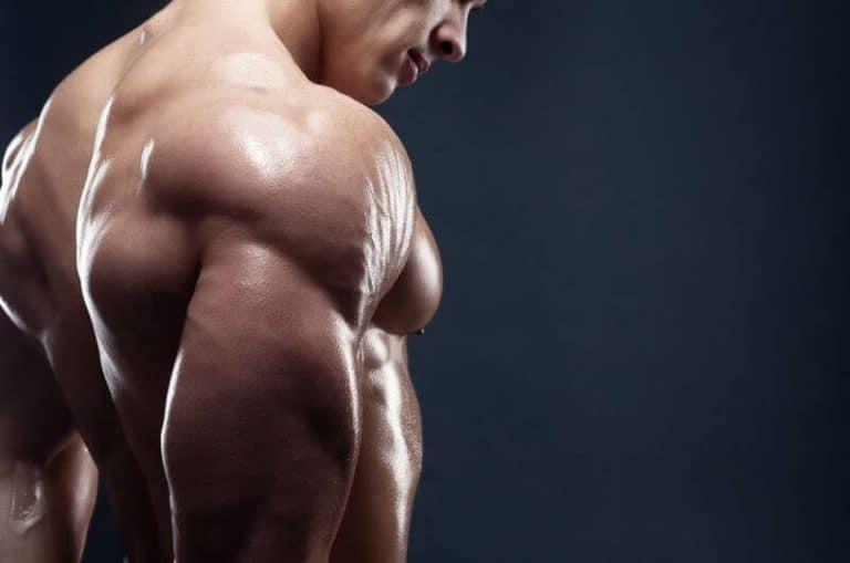 get-big-shoulders-quickly-bulksupplementsdirect-2
