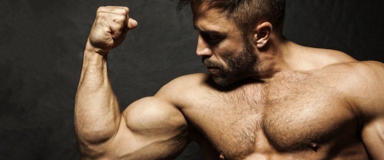 how-often-should-biceps-be-worked-bulksupplementsdirect-1