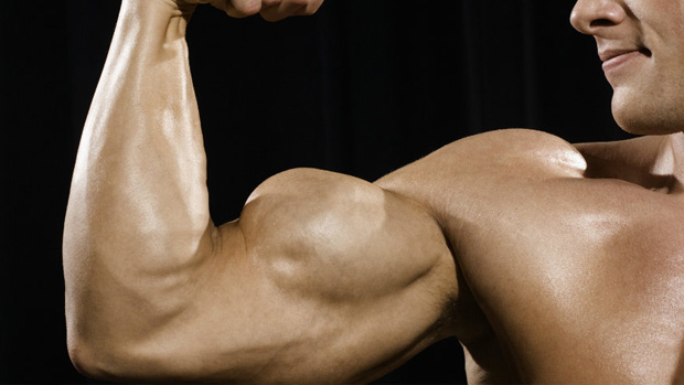ultimate-guide-to-arm-training-bulksupplementsdirect-5