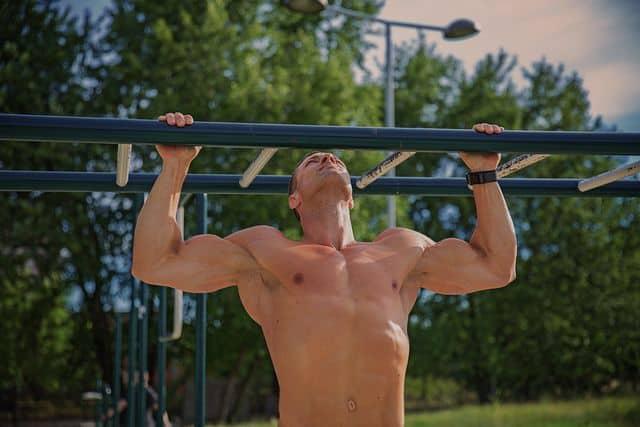 how-often-should-i-work-out-my-back-bulksupplementsdirect-2