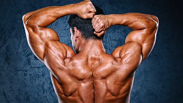 how-to-train-shoulders-with-bodyweight-bulksupplementsdirect-1