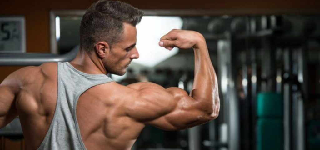 how-to-train-shoulders-with-bodyweight-bulksupplementsdirect-3