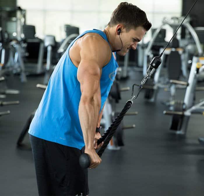 biceps-or-triceps-bulksupplementsdirect-1