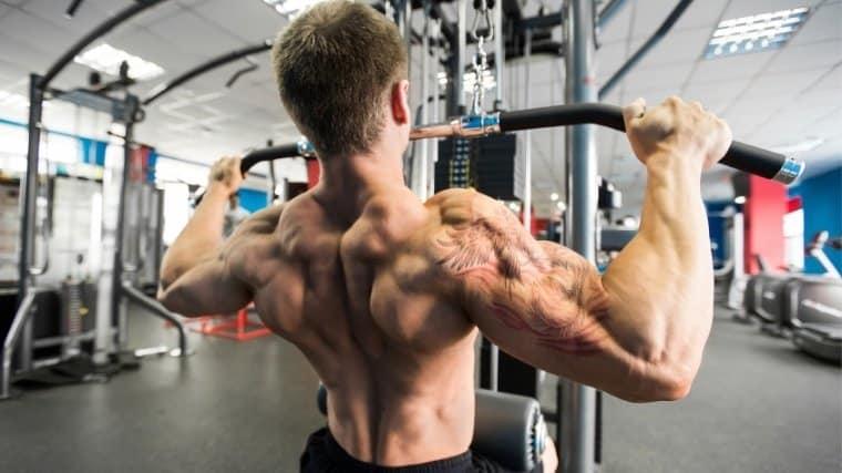 ultimate-guide-to-back-training-bulksupplementsdirect-1