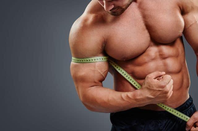 build-muscle-bulksuppplementsdirect-1
